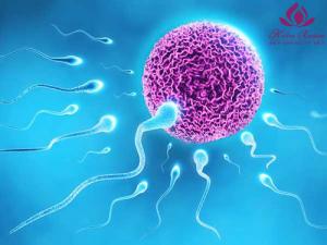 trứng lép ở phụ nữ