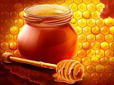 chua ngu ngay bang mat ong