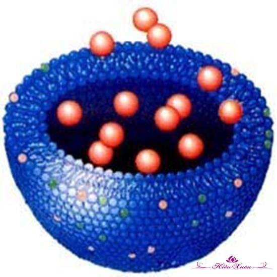 Nano Bright – Dưỡng chất làm trắng da ưu việt, an toàn