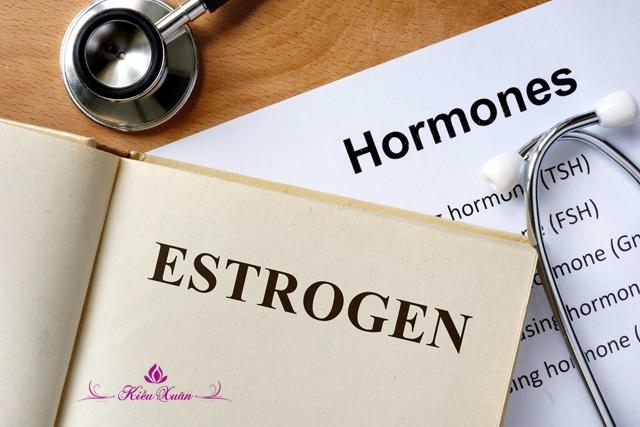 Nồng độ estrogen cao có nguy hiểm gì không?