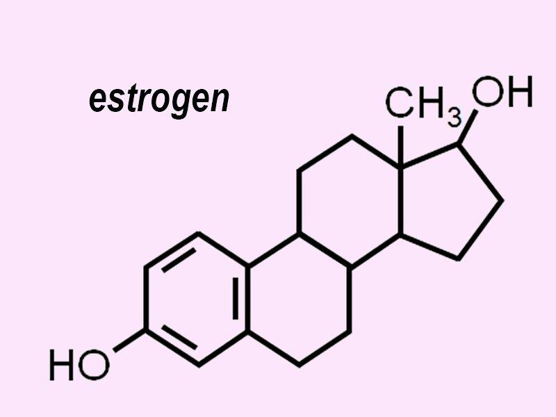 estrogen loại nào tốt nhất