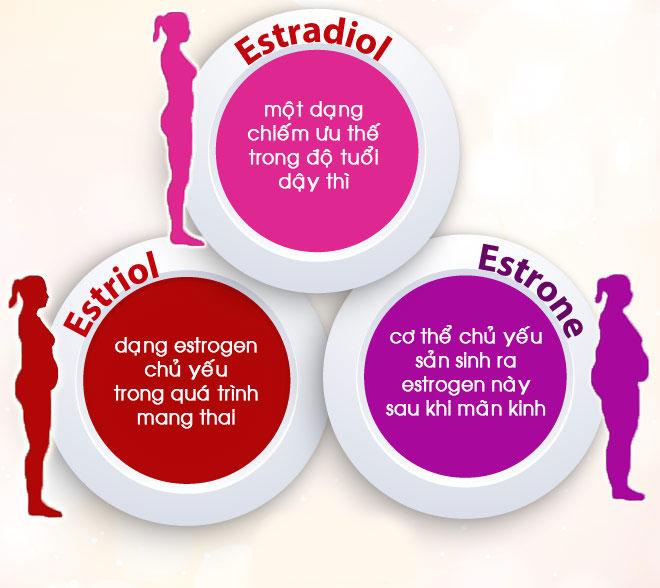 Estrogen là gì? Quan trọng thế nào đối với nhan sắc, sức khỏe và sinh lý nữ?